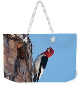 Red Headed Woodpecker Weekender Tote Bag