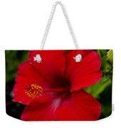 Red Hibiscus - Kauai Weekender Tote Bag