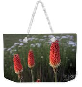 Red Hot Pokers Weekender Tote Bag