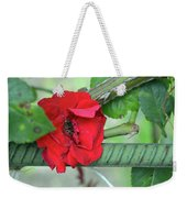 Red Rose On Natural Background With Green Leaves. Weekender Tote Bag
