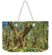 Relaxing Planes Trees Arbor Weekender Tote Bag
