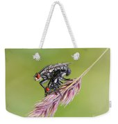 Reproduction - At The Height Of Bliss Weekender Tote Bag