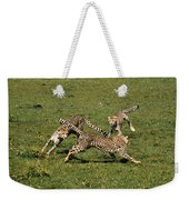 Ring Around The Cheetahs Weekender Tote Bag