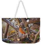 Robin On Cut Down Tree Branch Weekender Tote Bag