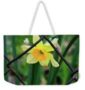 1 Sad Daffy Behind Bars Weekender Tote Bag