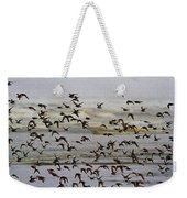 Sand Pipers In Flight Weekender Tote Bag
