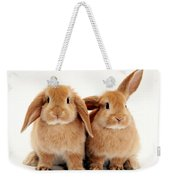 Sandy Lop Rabbits Weekender Tote Bag