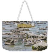 Seagulls On The Rocks Weekender Tote Bag