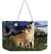 Shiba Inu And Her Puppy Weekender Tote Bag