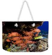 Shoulderbar Soldierfish Weekender Tote Bag