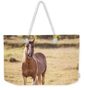 Single Horse Weekender Tote Bag
