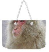 Snow-dusted Monkey Weekender Tote Bag