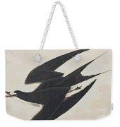 Sooty Tern Weekender Tote Bag
