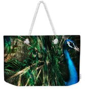 Splendour Weekender Tote Bag by Andrew Paranavitana
