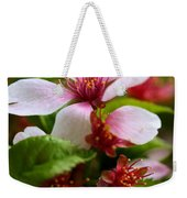 Spring Cherry Blossoms Weekender Tote Bag