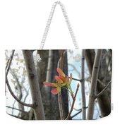 Spring Whirligig Weekender Tote Bag