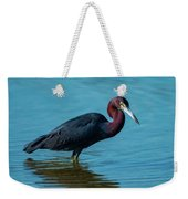 Strolling On A Bright Morning Weekender Tote Bag