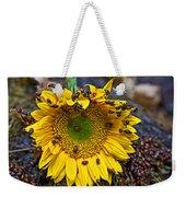 Sunflower Covered In Ladybugs Weekender Tote Bag