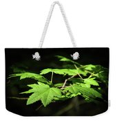 Sunny Summer Maple Weekender Tote Bag