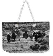 Sunset Bison Stroll Black And White Weekender Tote Bag