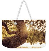 Sunset On A Tree Weekender Tote Bag