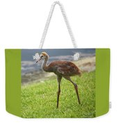 Sweet Juvenile Sandhill Crane Weekender Tote Bag