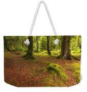 The Ardgartan Forest Weekender Tote Bag