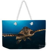 The Hawksbill Sea Turtle, Bonaire Weekender Tote Bag by Terry Moore