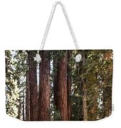 The House Group Giant Sequoia Trees Sequoia National Park Weekender Tote Bag