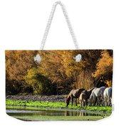 The Salt River Wild Horses  Weekender Tote Bag