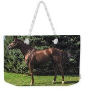 Thoroughbred Stallion Weekender Tote Bag