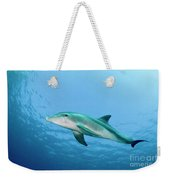 three year old Dolphin  Weekender Tote Bag
