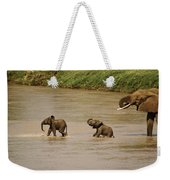 Tiny Elephants Weekender Tote Bag