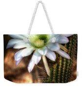 Torch Cactus - Echinopsis Candicans Weekender Tote Bag
