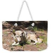 Tour Of Rocky Mountain Wildlife Foundation Weekender Tote Bag