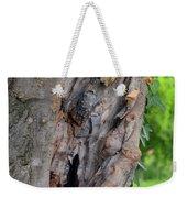 Tree Bark Detail, Natural Background. Weekender Tote Bag