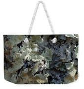 Tree Bark With Lichen Weekender Tote Bag