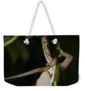 Tree Snake Eating Gecko Weekender Tote Bag