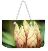 Tropical Garden 7 Weekender Tote Bag
