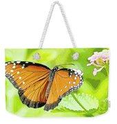 Tropical Queen Butterfly Framing Image Weekender Tote Bag