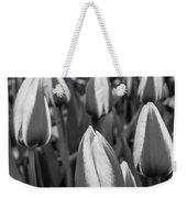 Tulips 3 Weekender Tote Bag