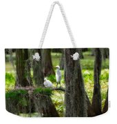 Two Baby Great Egrets And Nest Weekender Tote Bag
