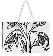 Vegetable Lamb Myth Weekender Tote Bag