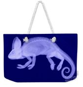 Veiled Chameleon X-ray Weekender Tote Bag