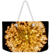 Wasp Nest, X-ray Weekender Tote Bag