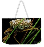 Water Beetle Brooding Eggs Weekender Tote Bag