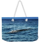 Whale Watching Balenottera Comune 3 Weekender Tote Bag