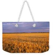 Wheat Crop In A Field, North Dakota, Usa Weekender Tote Bag