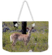 White-tailed Deer Weekender Tote Bag