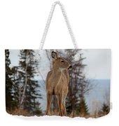 White-tailed Deer Three Weekender Tote Bag